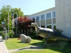 Dino vor dem Museum in Solnhofen