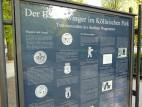 Bärenzwinger am Köllnischen Park: Als lebende Wappentiere wurden vier Bären am 17. August 1939 im Köllnischen Park am Märkischen Museum einem neu gebauten Domizil in Berlin-Mitte übergeben.